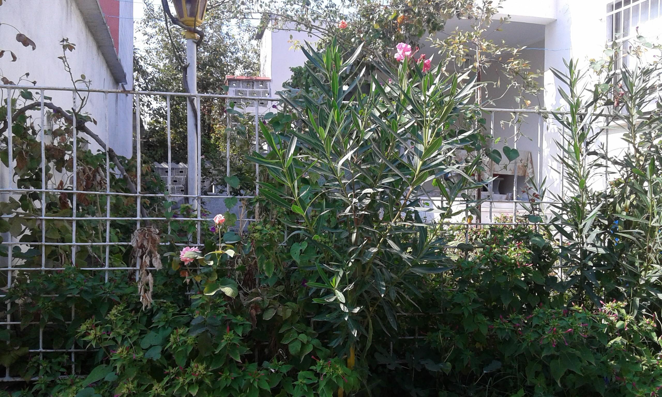 Mudanya Esencede satılık müstakil ev