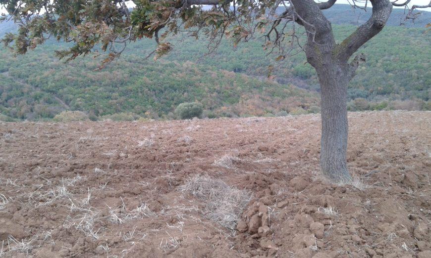 Mudanya Eşkel Köye Yakın Satılık Arsa