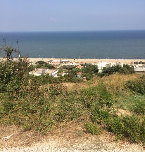 Mudanya Eğerce Deniz Manzaralı Satılık Tarla