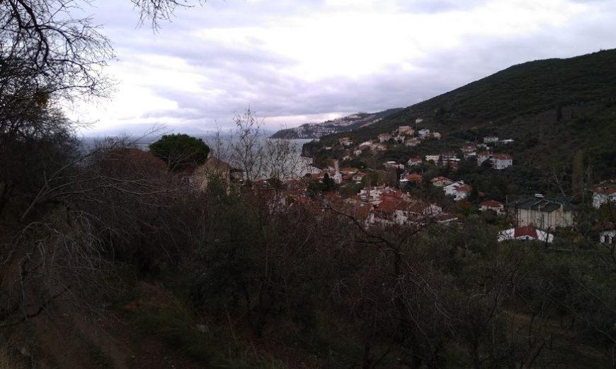 Deniz Manzaralı Satılık Zeytinlik Mudanya