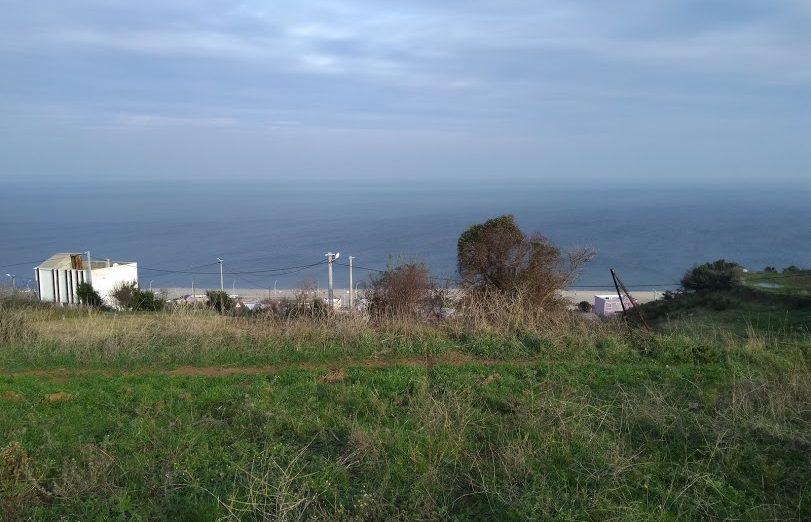 Bursa Mudanya Eğerce Satılık Deniz Manzaralı Tarla