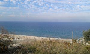 bursa-egerce-deniz-manzarali-satilik-arsa